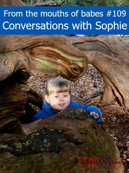 Sophie exploring outdoors: From the mouths of babes #109 - Conversations with Sophie