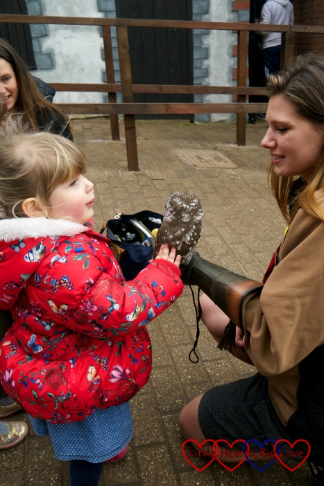 Sophie stroking an owl outside the Gruffalo River Ride Adventure