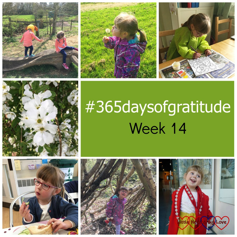 """Jessica and Sophie climbing on the carved wooden bench at Chiltern Open Air Museum; Sophie blowing a dandelion clock; Jessica painting a picture; white blossom on a tree; Jessica eating lunch at the church cafe; Jessica inside a den in the woods and Sophie dressing up in Edwardian clothes with a big grin on her face. """"#365daysofgratitude - Week 14"""""""