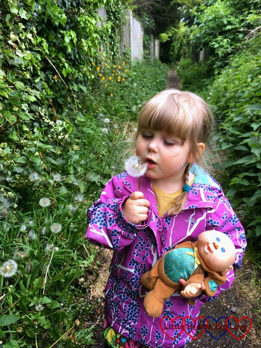 Sophie with her toy Monkey blowing a dandelion clock while out on a walk