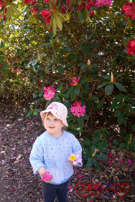 Sophie looking up at the rhododendrons in Langley Park