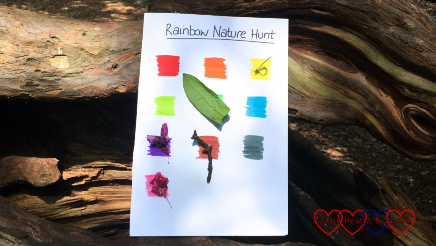 A rainbow nature hunt sheet with some leaves and rhododendron petals stuck to some of the colours