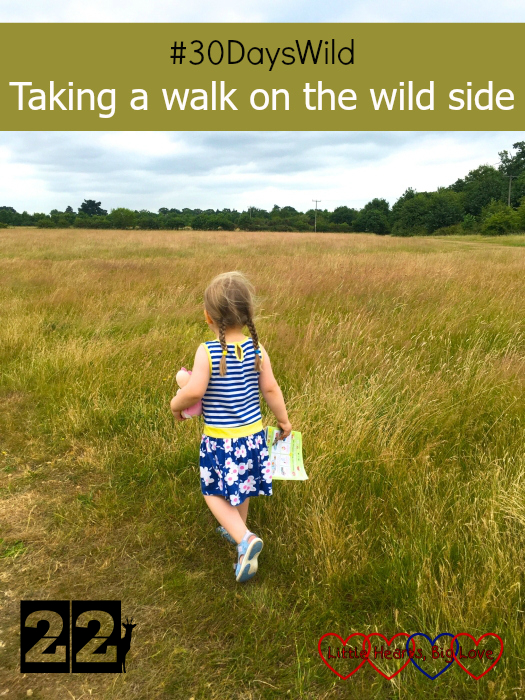 "Sophie exploring some fields - ""#30DaysWild - Taking a walk on the wild side"""