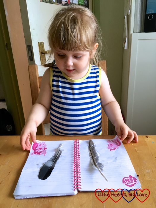 Sophie sticking feathers in her nature book