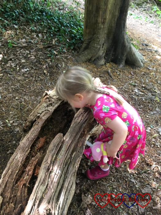 Sophie looking inside a log for mini beasts