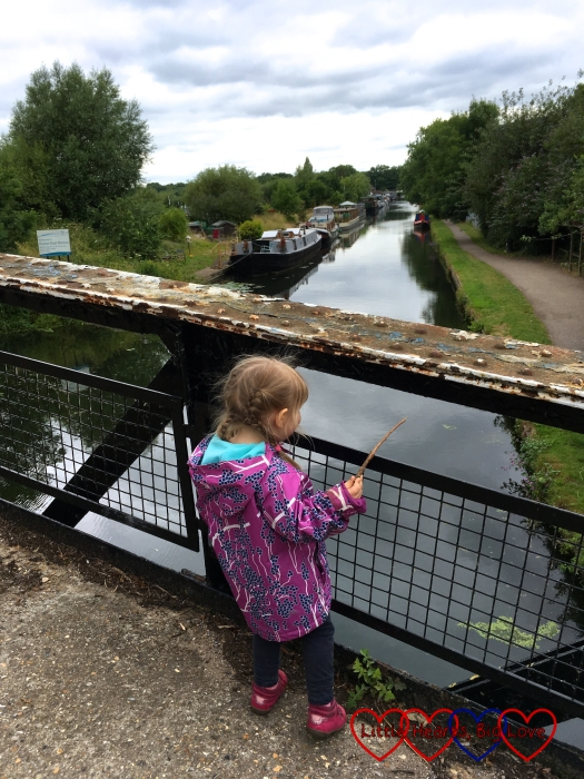 Sophie standing on the canal bridge holding a stick ready to throw in