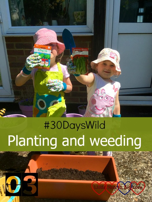 """Jessica and Sophie holding up the packets of seeds for planting lettuce and radishes - """"#30DaysWild - Planting and weeding"""""""
