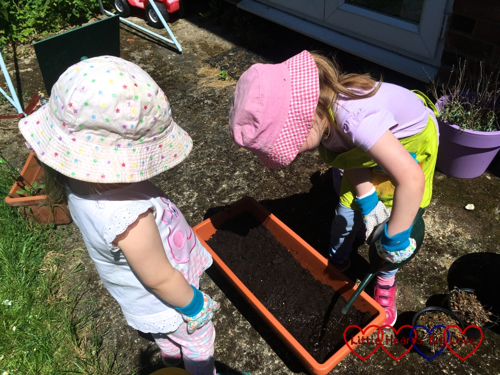 Jessica watering the seeds in the container while Sophie watches