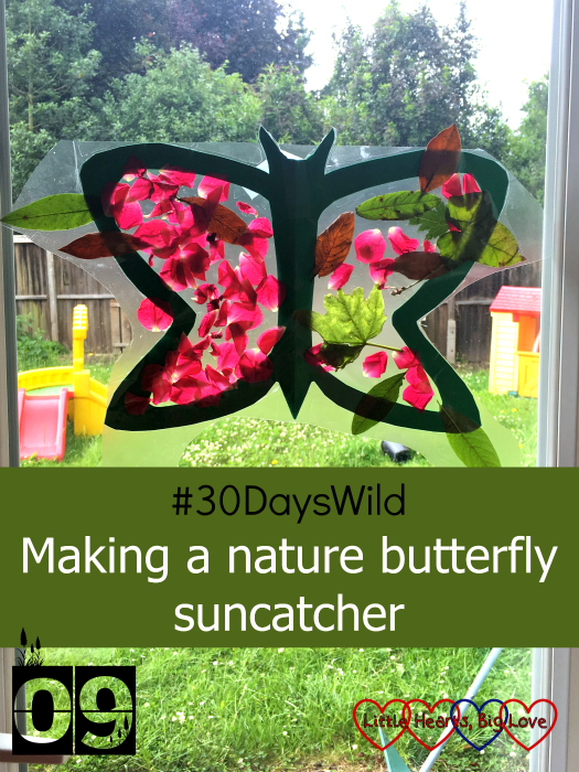 "A nature butterfly suncatcher made with cardboard, sticky-back plastic, leaves and petals on a window - ""#30DaysWild - Making a nature butterfly suncatcher"""