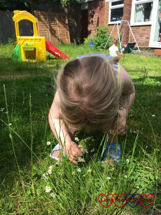 Sophie gathering daisies in the garden