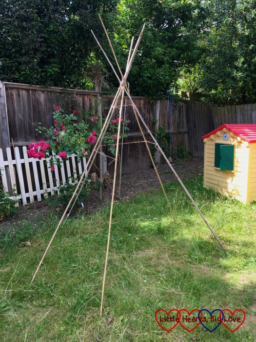 The tepee frame made from six bamboo canes tied together