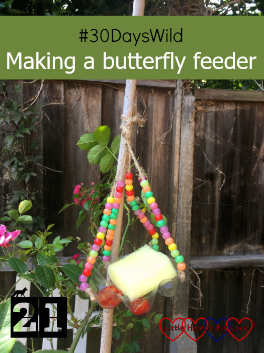 "A homemade butterfly feeder with pretty beaded string and a sugar water-soaked sponge - ""#30DaysWild - Making a butterfly feeder"""