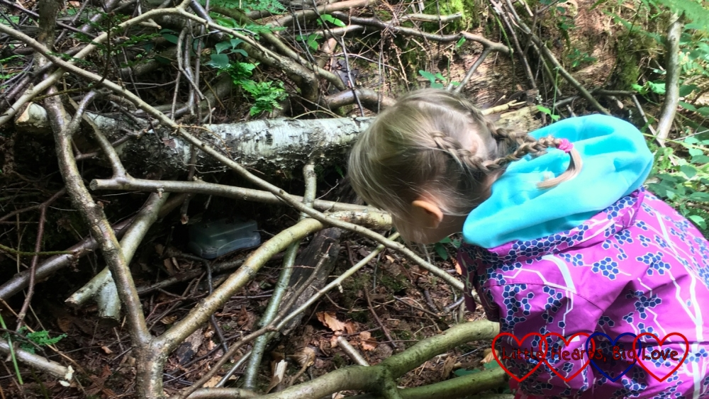 Sophie spots a geocache under a fallen tree