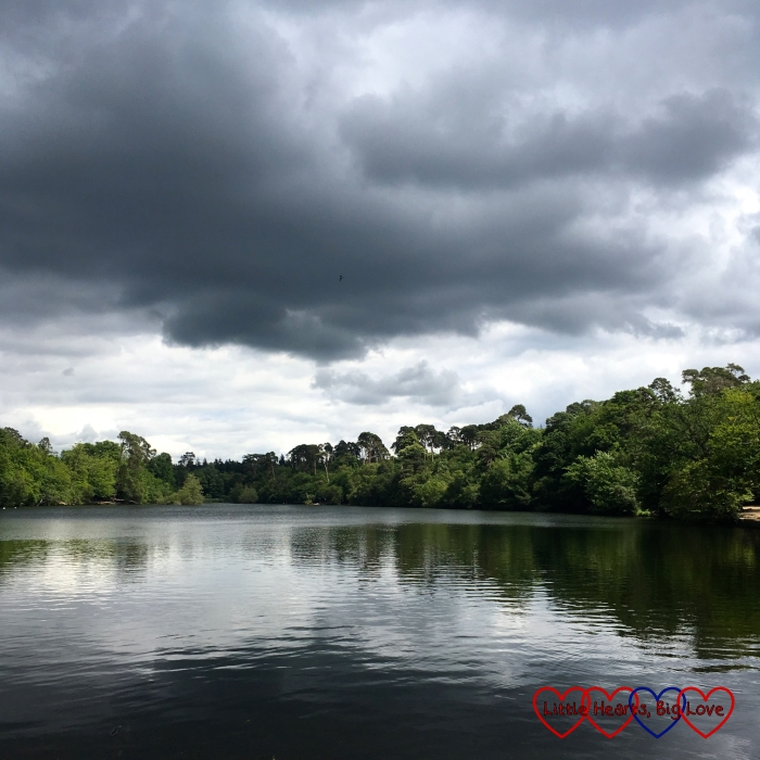 A moody looking sky over Black Park lake