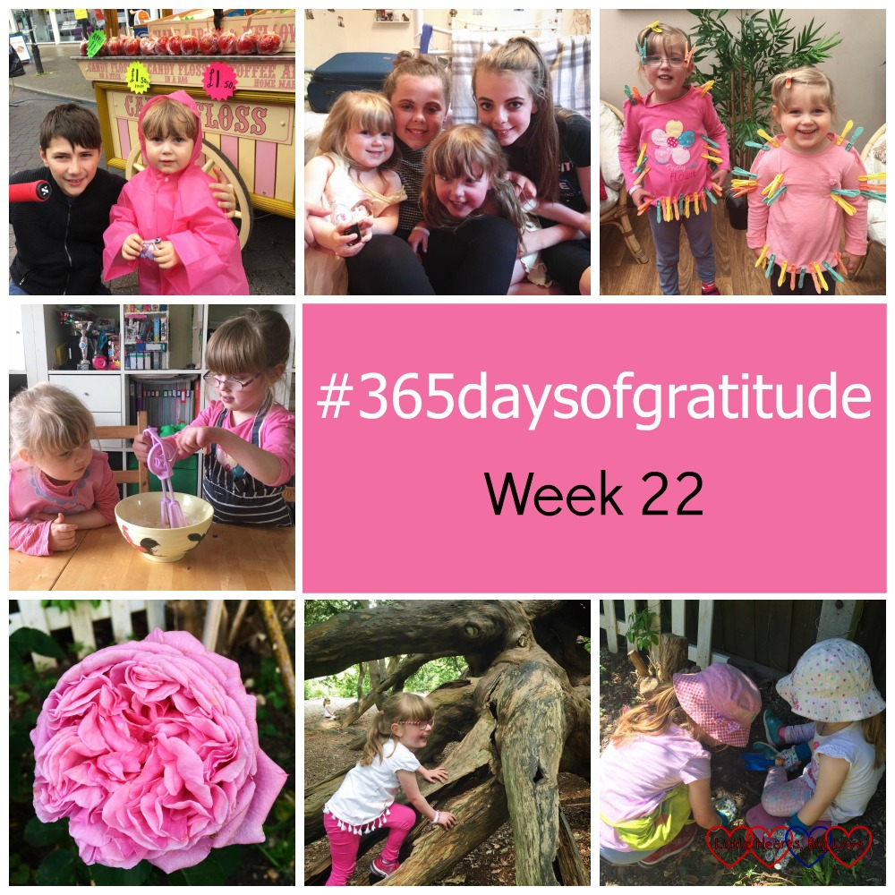 "Sophie at the Petersfield Festival in her pink poncho, the girls with their cousins, Sophie and Jessica covered in pegs, Sophie and Jessica doing some baking, my Pretty Jessica rose, Jessica climbing a tree,, both the girls digging in the garden - ""#365daysofgratitude - Week 22"""