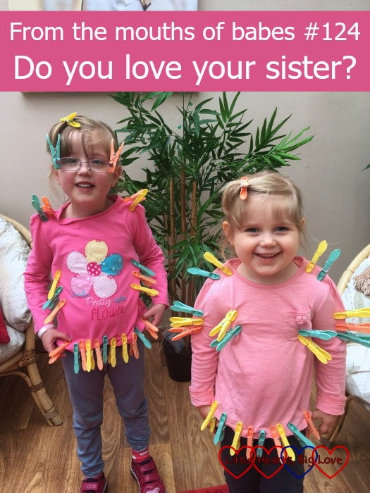 "Jessica and Sophie wearing lots of coloured pegs on their clothes - ""From the mouths of babes #124 - Do you love your sister?"""