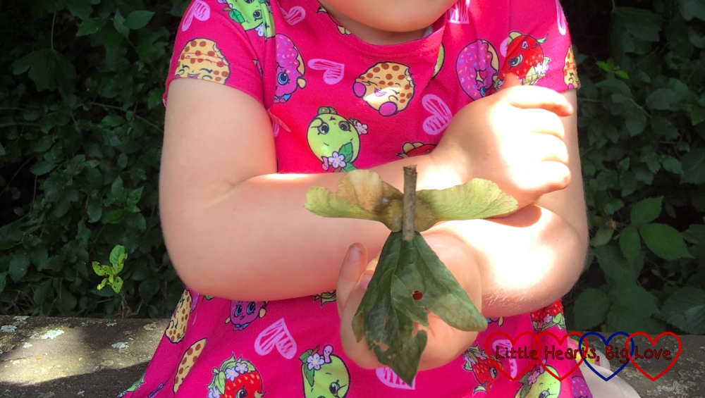 Sophie holding a fairy made from twigs, leaves and sycamore seeds