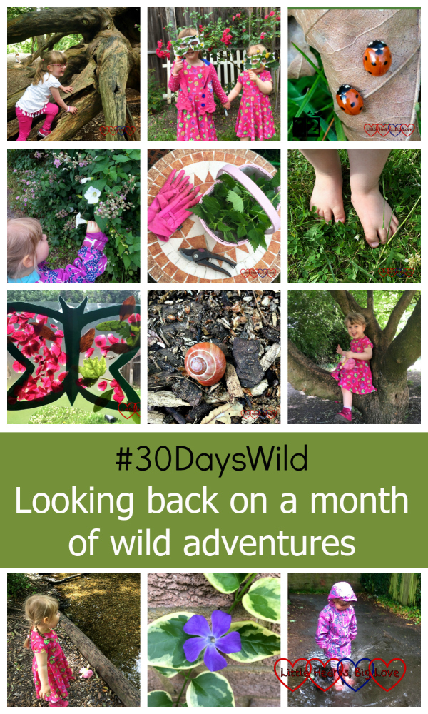 A collage of pictures showing our adventures during #30DaysWild - making nature masks, learning about ladybirds, picking bindweed flowers, collecting nettles, going barefoot on the grass, making nature butterfly suncatchers, spotting snails, climbing trees, looking at a stream, wild flowers and dancing in the rain - #30DaysWild - Looking back on a month of wild adventures