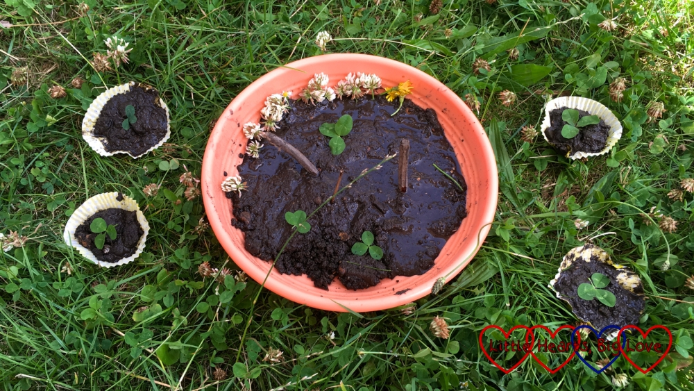 A selection of mud cakes on the grass in the garden