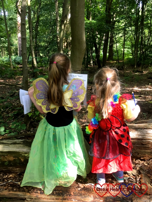 Jessica and Sophie in their fairy wings reading the sign for Fairy Summer's stop on the trail