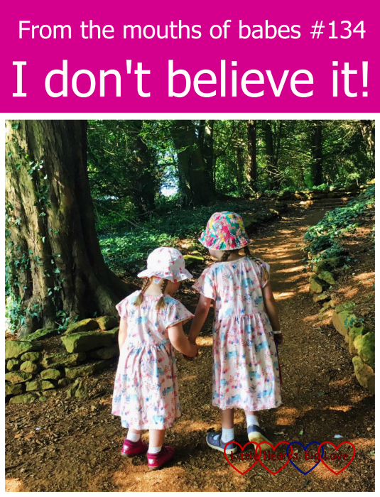 "Sophie holding Jessica's hand and helping her up hill - ""From the mouths of babes #134 - I don't believe it!"""