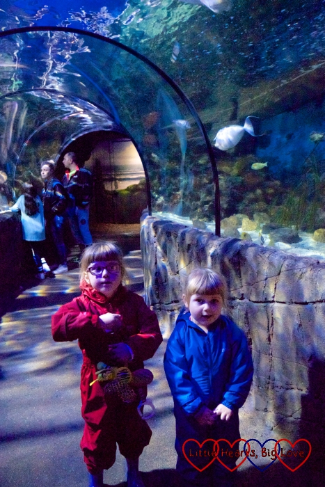Jessica and Sophie in the tunnel at the Sea Life Centre at Chessington World of Adventures