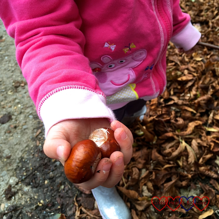 Sophie holding two conkers