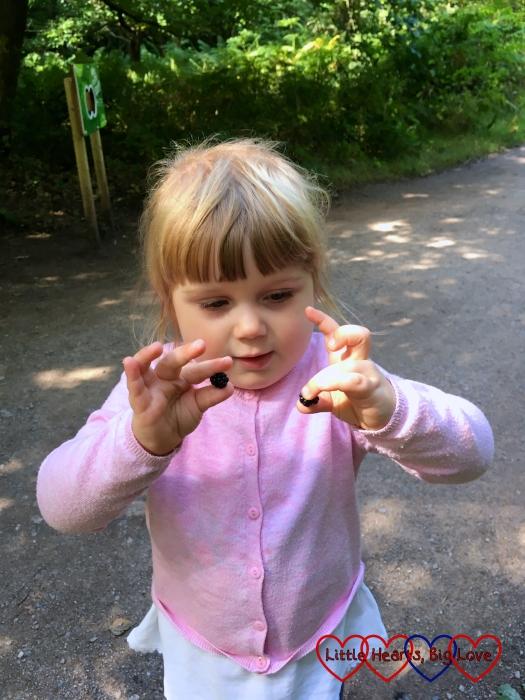 Sophie with two freshly picked blackberries