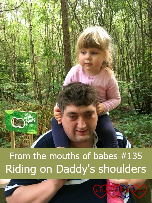 "Sophie riding on Daddy's shoulders - ""From the mouths of babes #135 - Riding on Daddy's shoulders"""