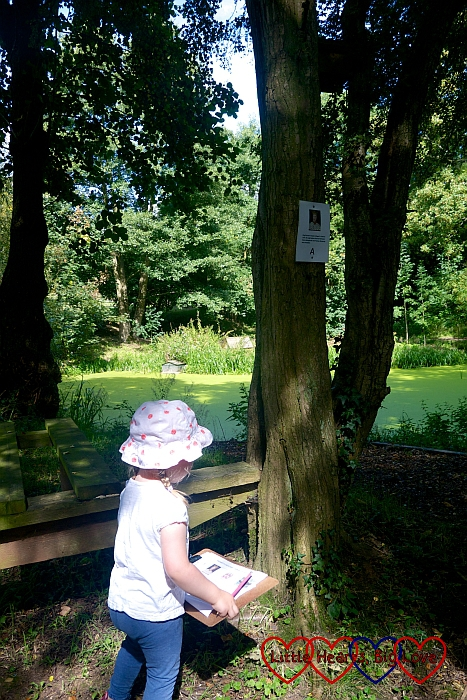 Sophie stopping to write down one of the clues near the ornamental ponds