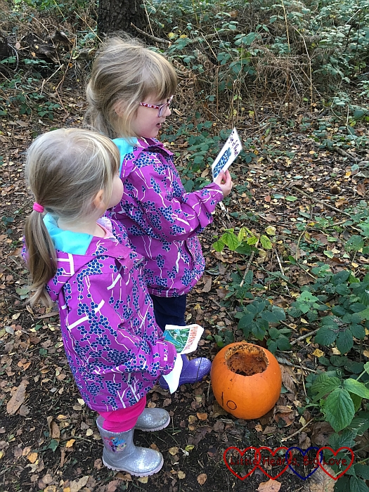 Jessica and Sophie with one of the pumpkins on the Halloween trail at Black Park