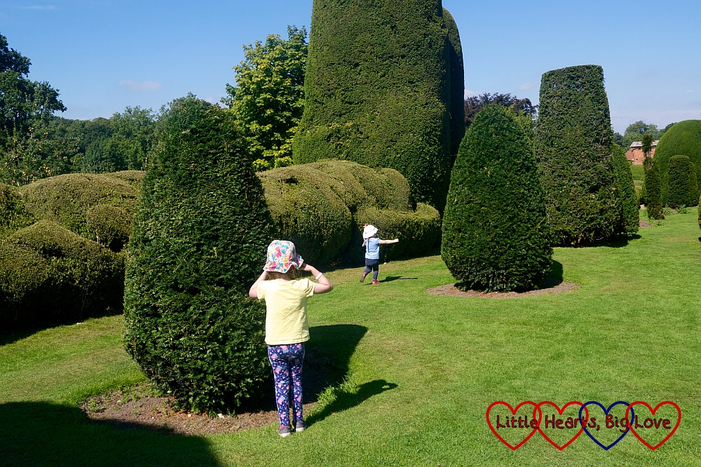 Jessica and Sophie playing hide and seek amongst the yew trees at Packwood House