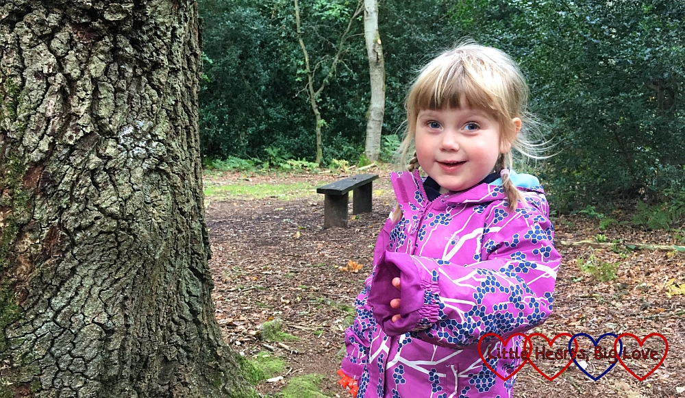 Sophie out on a walk at Burnham Beeches