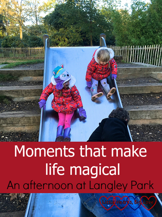 "Jessica and Sophie sliding down the slide towards Daddy - ""Moments that make life magical: an afternoon at Langley Park"""