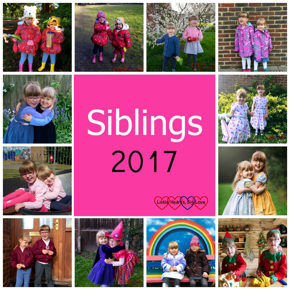 """A year of siblings photos - """"Siblings 2017"""""""