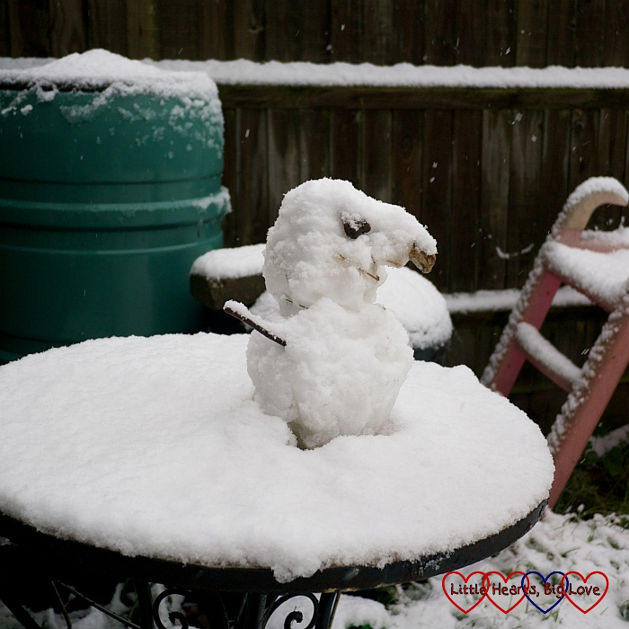The mini snowman looking more like a snowbird