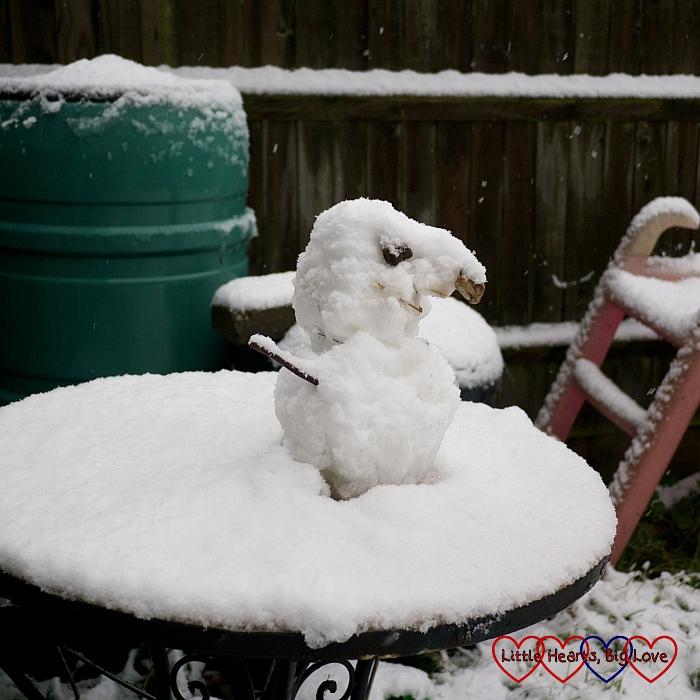 The mini snowman looking more like a snowbird