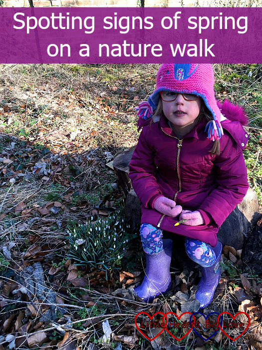 """Jessica sitting next to a patch of snowdrops - """"Spotting signs of spring on a nature walk"""""""
