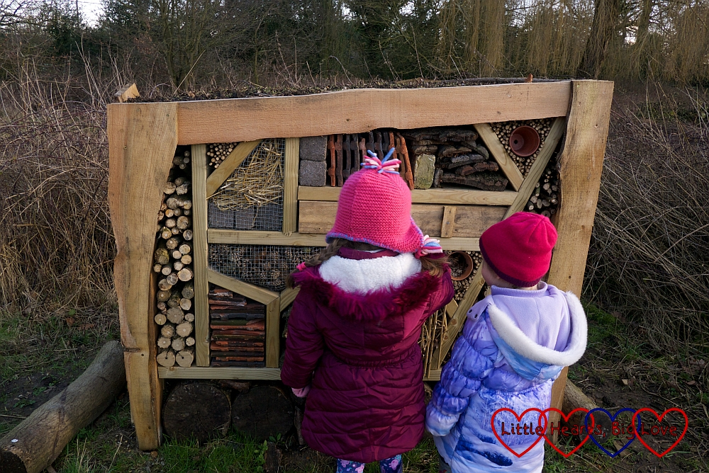 Jessica and Sophie investigating the insect hotel