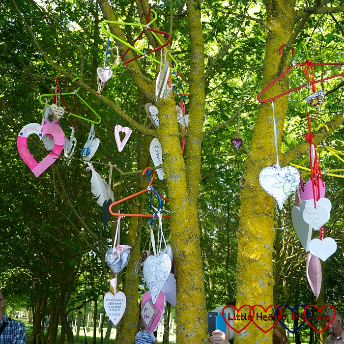 Hearts hanging on the Little Hearts Matter tree