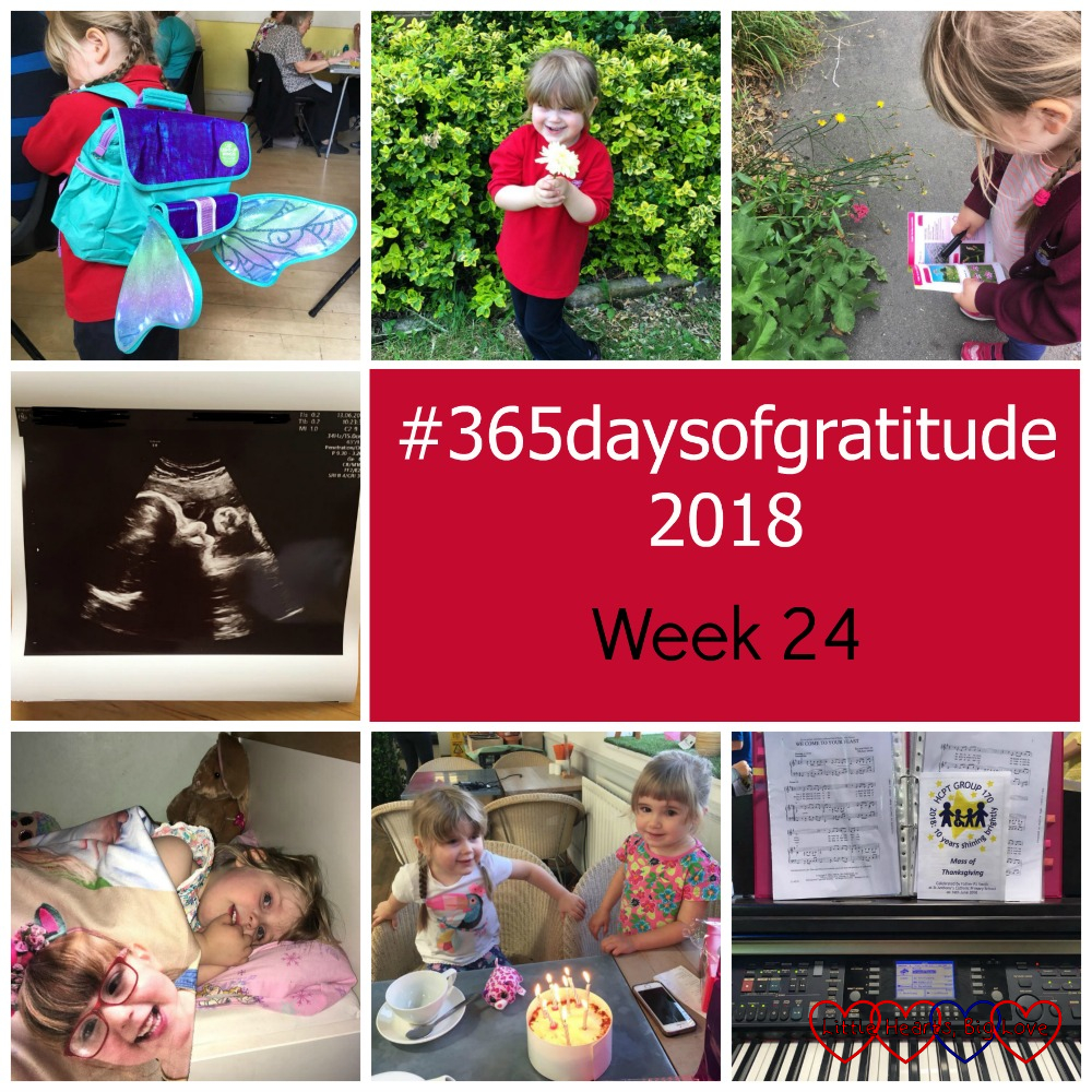 "Sophie's new butterfly backpack; Sophie holding a flower; Sophie looking at wild flowers with her I-Spy book; a scan picture of Peanut at 31 weeks; Sophie in bed with her photo blanket covered in photos of Jessica; Sophie and her friend with a birthday cake; a piano and music - ""#365daysofgratitude 2018 -Week 24"""