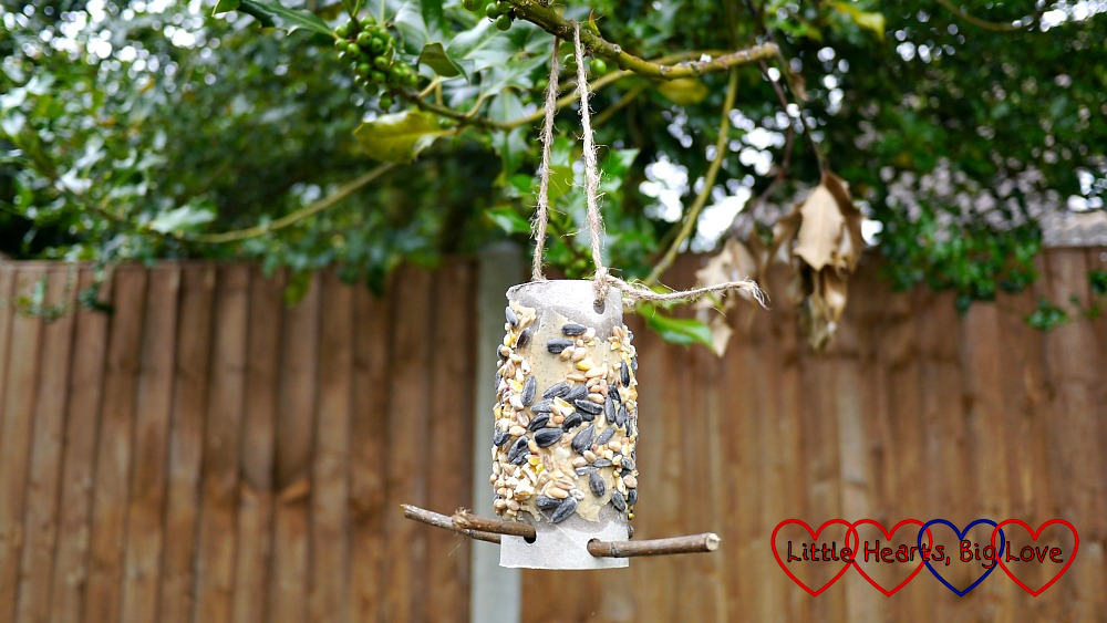 A bird feeder made from a toilet roll tube covered in peanut butter and seeds