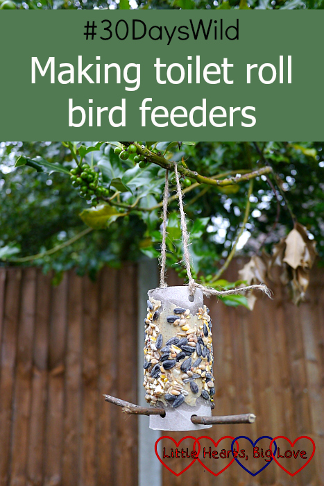 "A bird feeder made from a toilet roll tube covered in peanut butter and seeds - ""#30DaysWild - Making toilet roll bird feeders"""