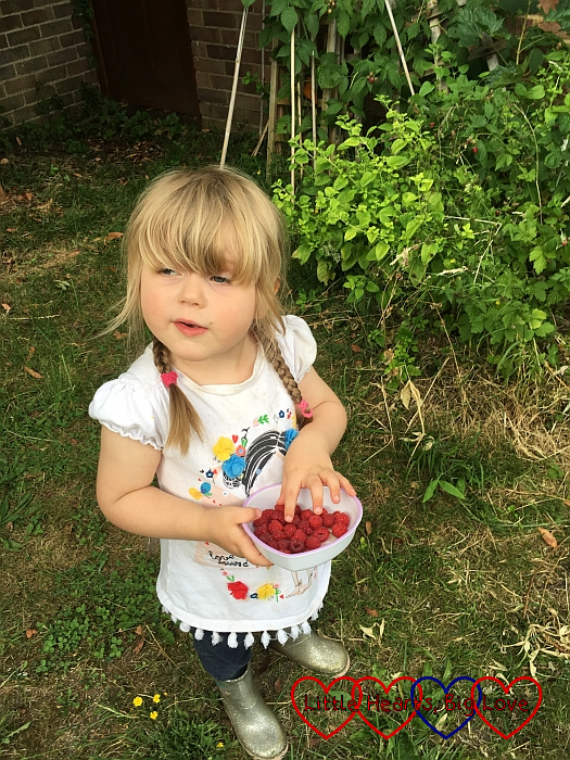 Sophie picking raspberries in the garden