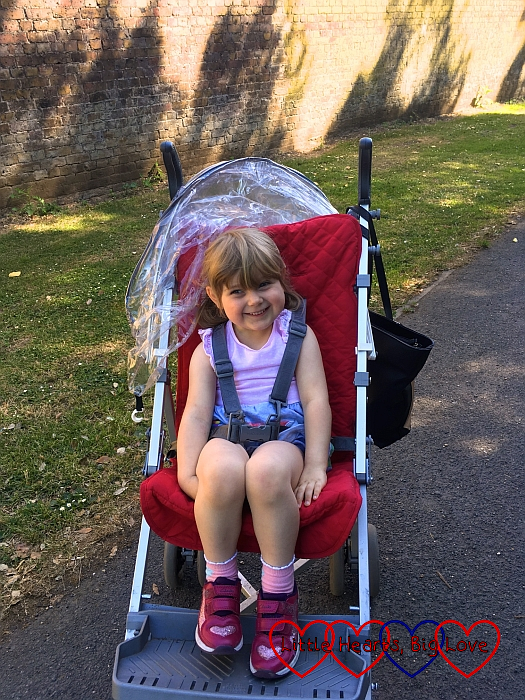 Sophie enjoying one last ride in Jessica's buggy