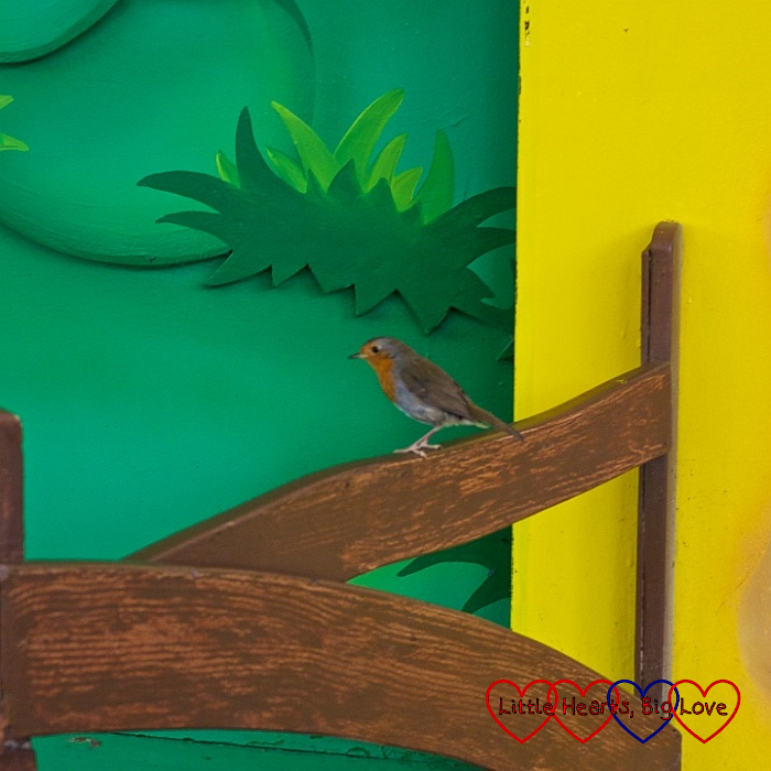 A little robin at the Duplo Valley Theatre