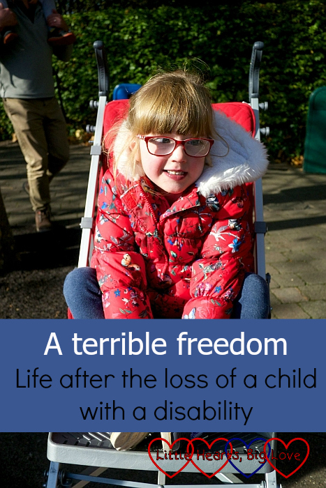 "Jessica in her buggy - ""A terrible freedom - life after the loss of a child with a disability"""