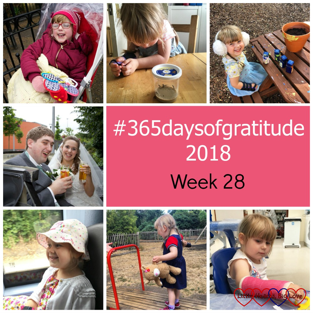 "A smiley Jessica in her buggy; Sophie looking at the tiny caterpillars in their pot; Sophie painting a plant pot while wearing white ear muffs; me and hubby on our wedding day; Sophie on the bus; Sophie on a seesaw at the park; Sophie looking at the pink cast on her arm - ""#365daysofgratitude 2018 - Week 28"""
