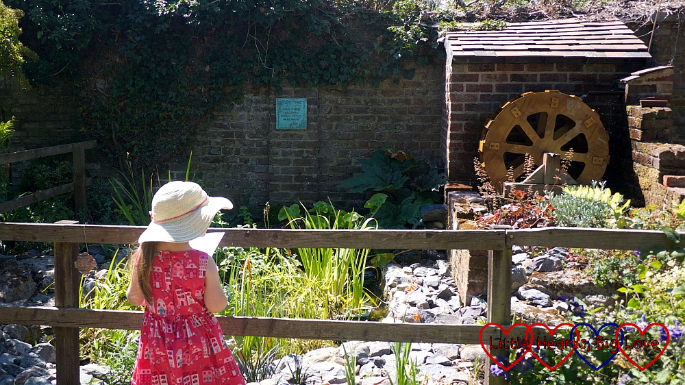 Sophie looking at the water wheel in the Garden of Time at Iver Environment Centre