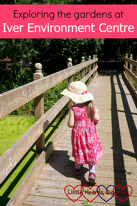 "Sophie crossing the bridge over the pond at Iver Environment Centre - ""Exploring the gardens at Iver Environment Centre"""